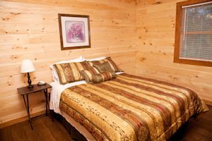 Fantastic cabin bedroom - queen bed